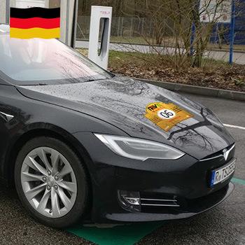 06 Team Tesla Regensburg (DE)